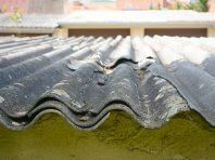 asbestos sample garage roof