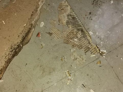 Broken asbestos floor tiles are revealed when the carpet is pulled back